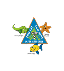 Safer-3-logo